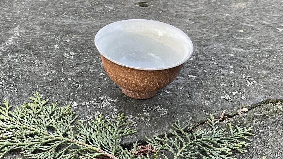 Tea Cup #3