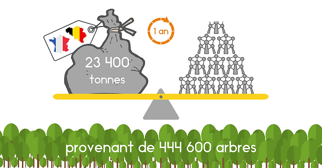 Infographie Dechets Emballages.png