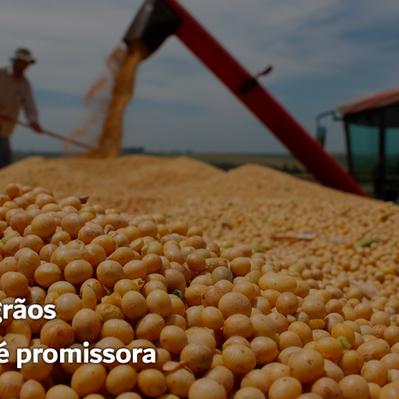 Safra de grãos 2020/2021 é promissora