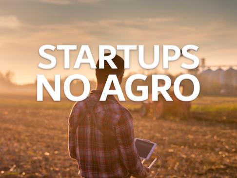 Representatividade das startups no agronegócio