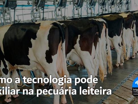 Como a tecnologia pode auxiliar na pecuária leiteira