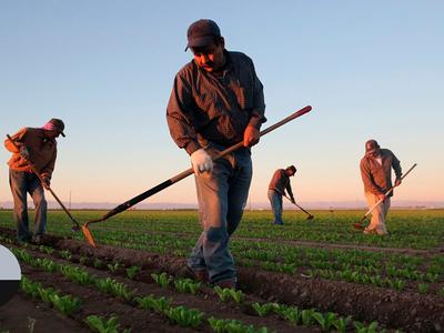 Geração de empregos no agronegócio brasileiro