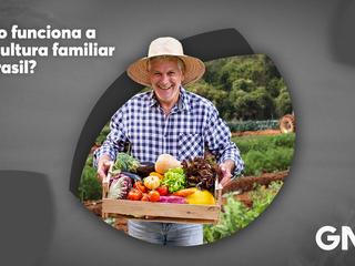 Como funciona a agricultura familiar no Brasil?