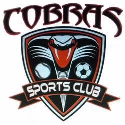 Cobra Soccer