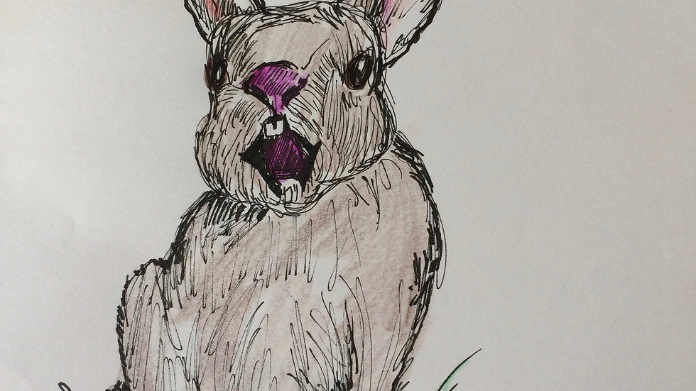 """Yawning Bunny 8""""x10"""" Print"""
