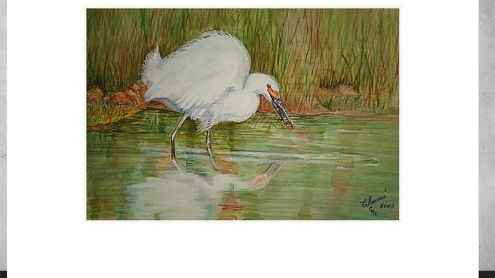 """White Egret Wading  5""""x 7"""" White Matted Print"""