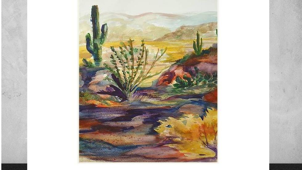 """ Desert Color""     5""x7""  White Matted Print"