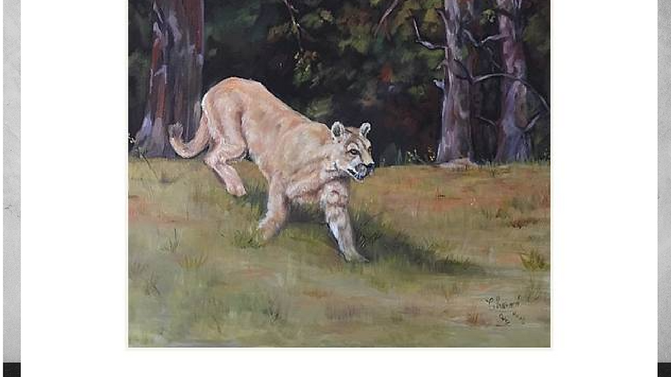 """"""" On the Prowl""""     5""""x7""""  White Matted Print"""