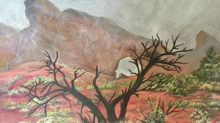 """Desert in the Mist - 8""""x10"""" Print"""