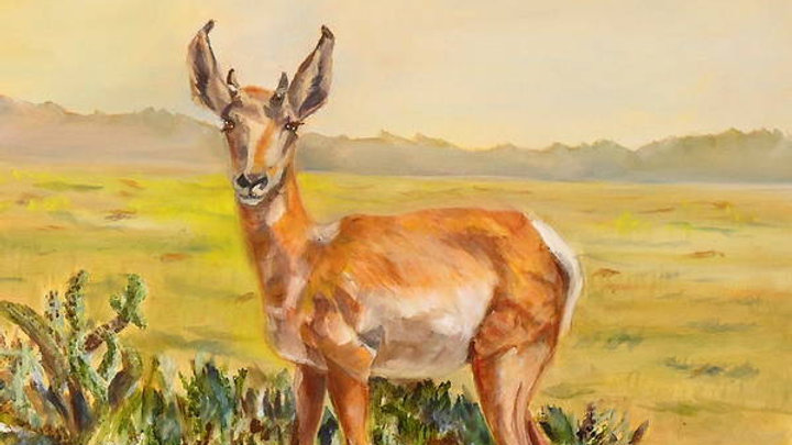 "Arizona Sonora ProngHorn 8""x10"" Print"