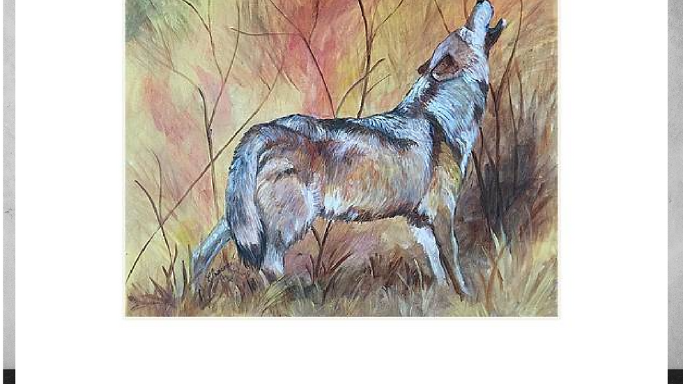"""Call of the Wild   5""""x7""""  White Matted Print"""