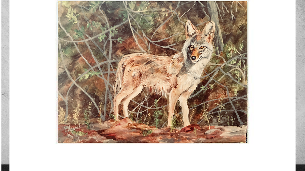"""I'm All Ears""  5""x7""  White Matted Print"