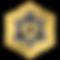 Synchronicity Logo Shape Transparent-Gol