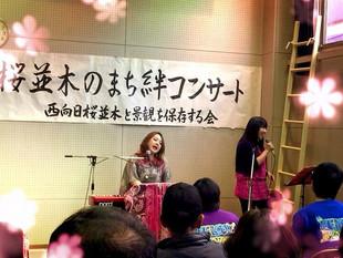 西向日桜祭り 絆コンサート