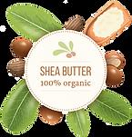 Shea Butter Organic.png