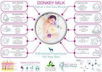donkey milk infographic 2.jpg