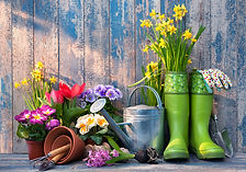 gardening-tools-tips.jpg
