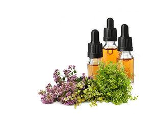 Origanum Majorana Herb Extract