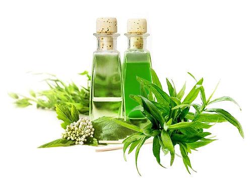 Artemisia Dracunculus Leaf/Stem Extract
