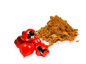 Paullinia Cupana Seed Powder
