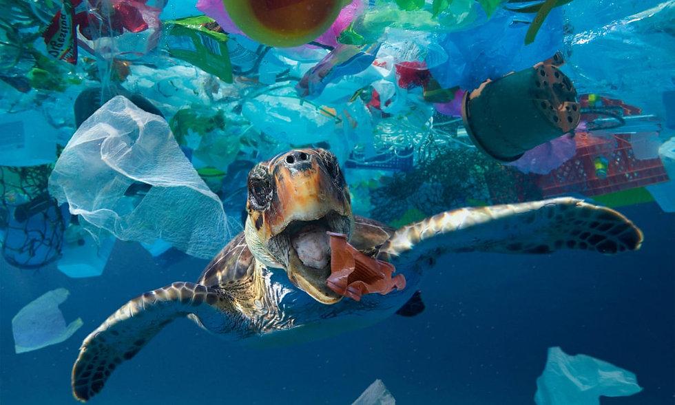ocean plastic pollution.jpg
