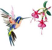 Frenchsoaps Humming Bird reversed.jpg