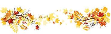 fall-leaves-clip-art-border-autumn-leave