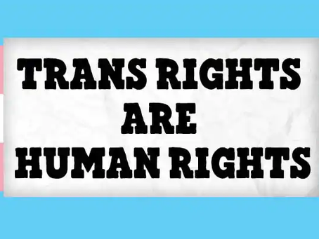 Tran Day of Visibility