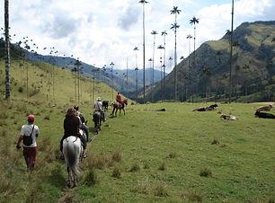Valle de Cocora paardrijden.JPG