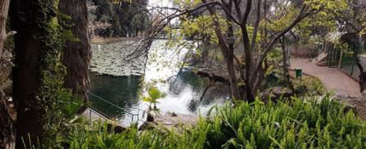 Eye 8 pond walkway AC compressed.jpg