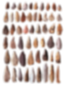 Hand axes.png