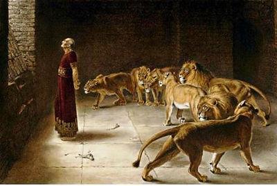 Daniel lion AC compressed.jpg