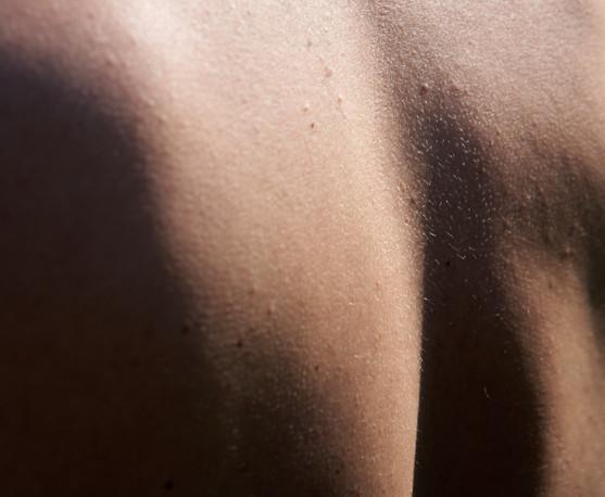 body parts 246.jpg