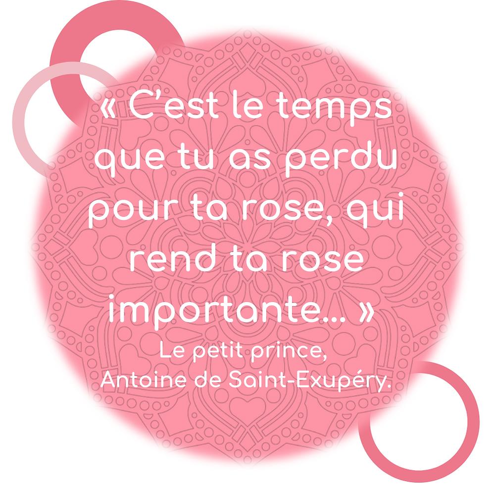 Portez Vous Bien citation de Saint Exupéry c'est le temps que tu as perdu pour ta rose qui rend ta rose importante.