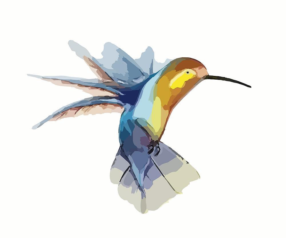 Portez Vous Bien présente la légende du colibri