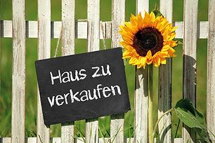 Internetseite_Sonnenblume.jpg