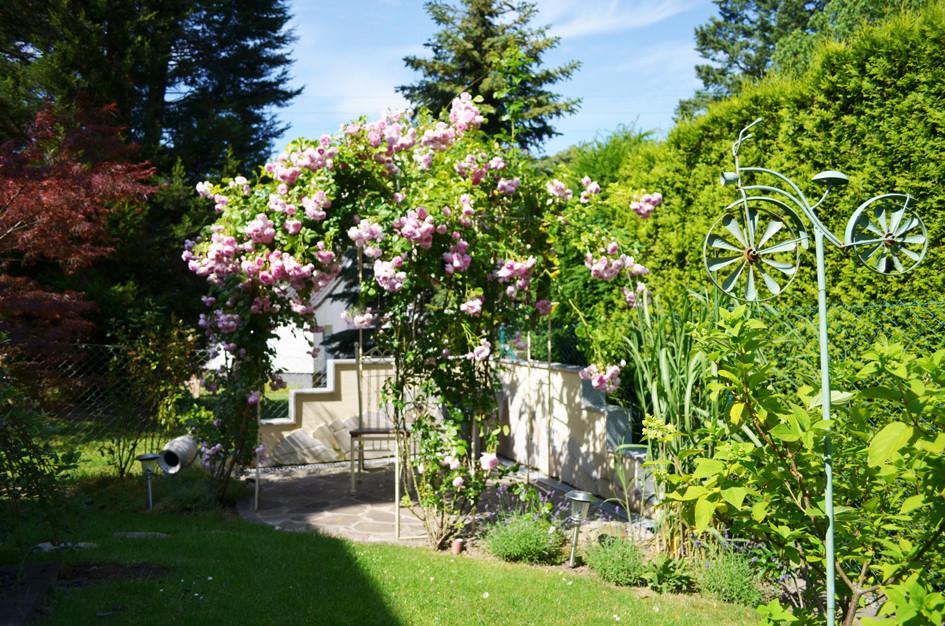 Garten4.jpg