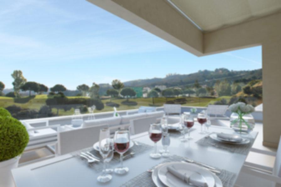 Terrace-view.jpg