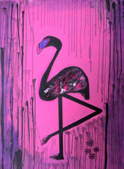 """Black Flamingo"""