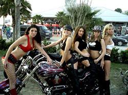 The Vibe Girls