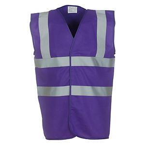 hiviz purple.jpg