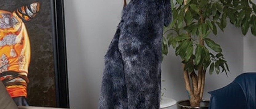 Hooded Throw Black Fur