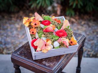 Spring Pave Box