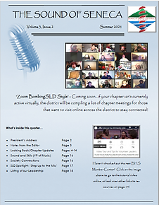 SoS web page cover graphic.png