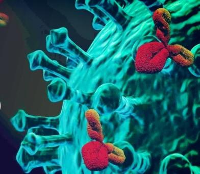 Intercambialidade de vacinas, por Dr. Luis Alberto Verri