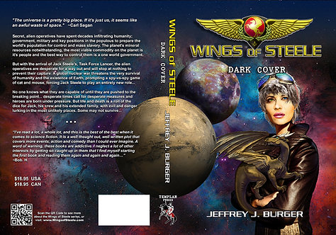 Wings of Steele Dark Cover