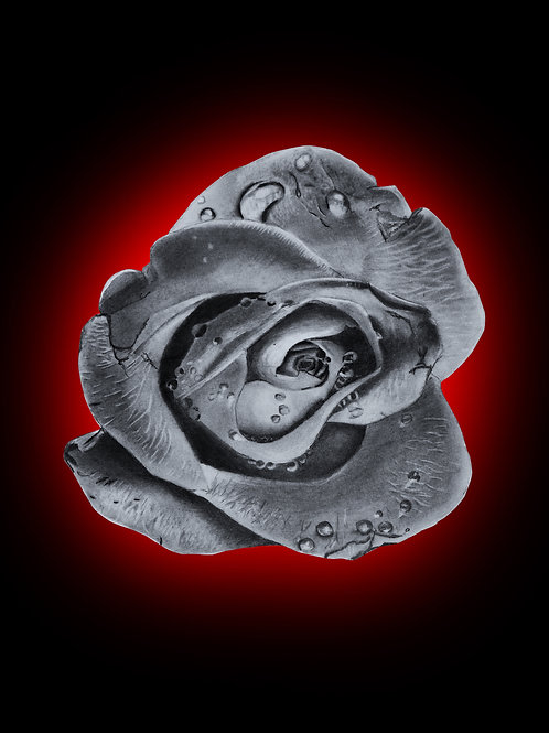 rose, sketch, flower sketch, lust, lust sin, sin, 7 deadly sins, red background, rose with droplets, rose drawing, poster,
