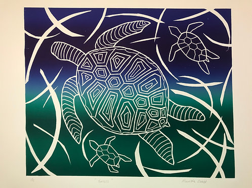 Turtles, Mauretta Drage
