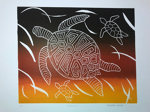 Turtles, Mauretta Drage