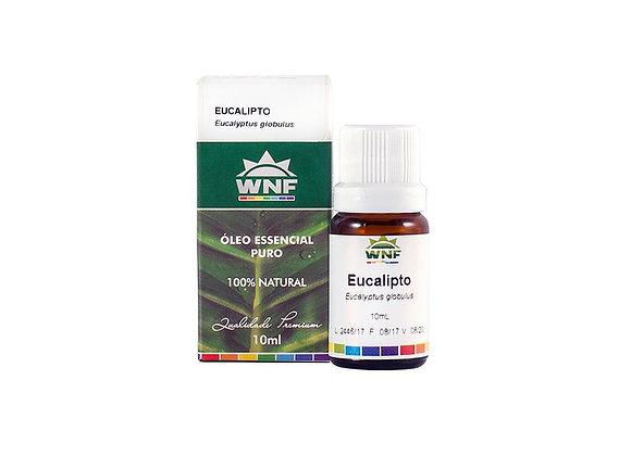 Óleo essencial Eucalipto - Wnf
